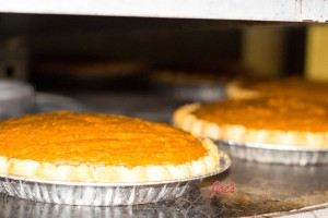 ThanksGiving-PumpkinPie