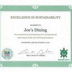 Mayor's Sustainability Award